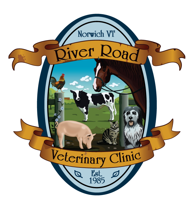 River Road Veterinary Clinic